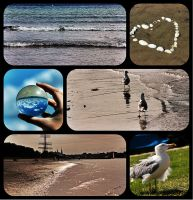 A small collage of the Baltic Sea_ by Fellrakete by Fellrakete