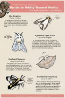 Guide to Oddly Named Moths In My Garden by ursulav