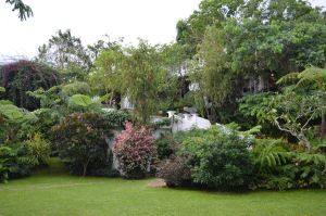 The Secret Garden in Antonio's, Tagaytay City 2 by InqsThuyen