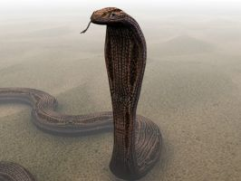 much better snake by musth