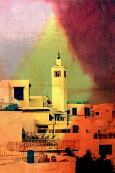 Tunis after the revolution by roningumi