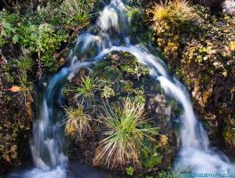 Jurassic Waterfall by Moohoodles