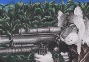 Kansja: the sniper cat by janston