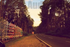 Road to Bandung by audiansha