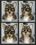 Realistic cat head FOR SALE by Eddie-Ka