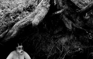 Roots by bainen