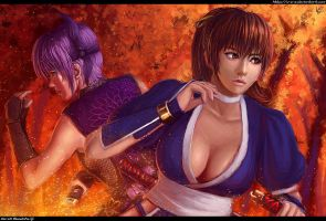 Dead or Alive - Ninja Gaiden - Kasumi and Ayane by W-E-Z