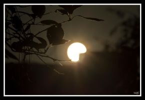 Sun by sinanrby