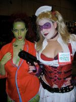 Arkham Asylum Harley and Ivy by miss-kitty-j