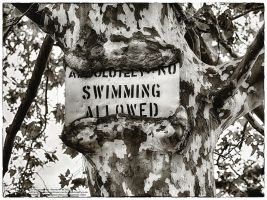 Absolutely No Swimming Allowed by tmfNeurodancer