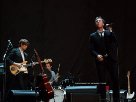 2012 The Walkmen 004. by GermanCityGirl