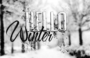 Hello Winter! banner by allleee