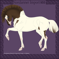 Nordanner Import 955 by DovieCaba