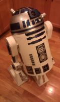 R2 D2 Homemade by MookFall