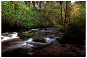 River rapids HDR by Leeby