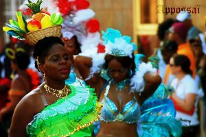 Carnaval 2011 N''69 by Appossai