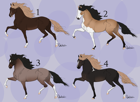 Real Horse Adoptables 2 *CLOSED * by michelle222