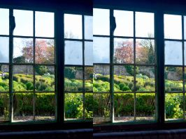 See Through Windows In Park Hill's Walled Garden by aegiandyad