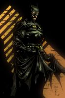 The Dark Knight by jayfelde