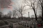 Remembrance Day 2014 by Grimlord666