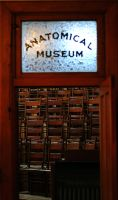 Medical History Museum of Indianapolis by Meddling-With-Nature