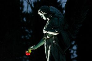 Angel with Rose - Ohlsdorf II by onkami