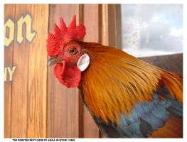 The Rooster Next Door by Asura-Valkyrie