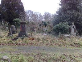 Southampton old cemetery 5 by thelaird1