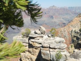 Grand Canyon by LillyFruit