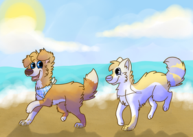 :CE: Beach run by LouPup