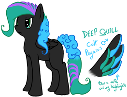 MLP:FiM - Deep Quill (Concept) by Shrewdberry