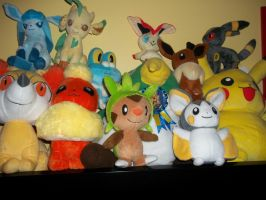 Pokemon Plushes by teamspike1
