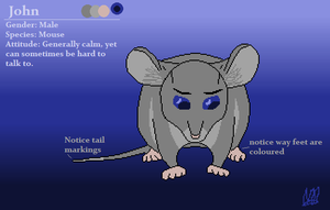John the Mouse - Ref by Kuna-Hero