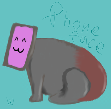 SKTCH - Phone Face (concept) by blackhorizonofdeath
