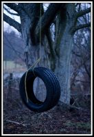 Tire Swing by TINTPhotography