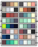 Palette adopts by croum