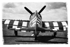 Thunderbolt by Daniel-Wales-Images