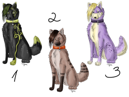 Wolf Point Adoptables 1 by anouki-morgenstern