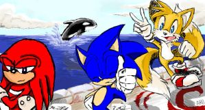 Sonic Heroes Collaboration by oOSonicYashaOo