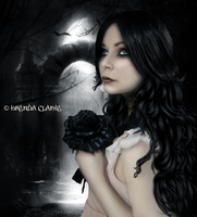 Black Rose by Inadesign