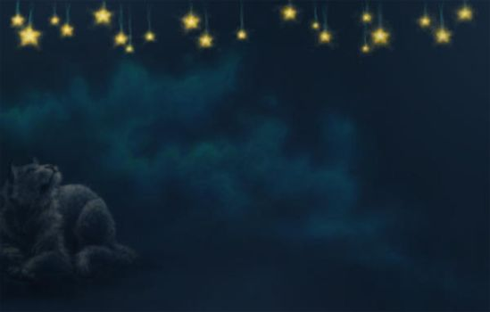 Look at the stars by Tora-Shiroi