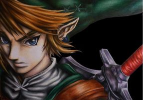 Link from the Legend of Zelda (twilight princess) by Polaara