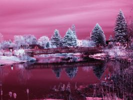 Au Sable River Infrared by blackismyheart90