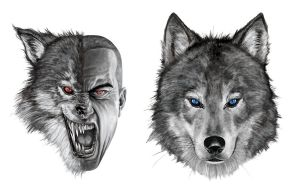 Werewolves by caiocacau