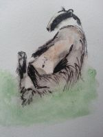 Badger loves life by LightningChaser