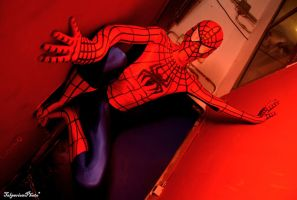 Spiderman: On the Wall by C4ppi3