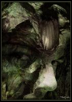 Spirit of the Forest by mooninthescorpio