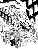 Peter Parker, Spider-man by deankotz