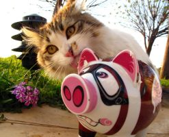 Meoink by spoukideria