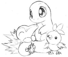 Pokemon fire starters